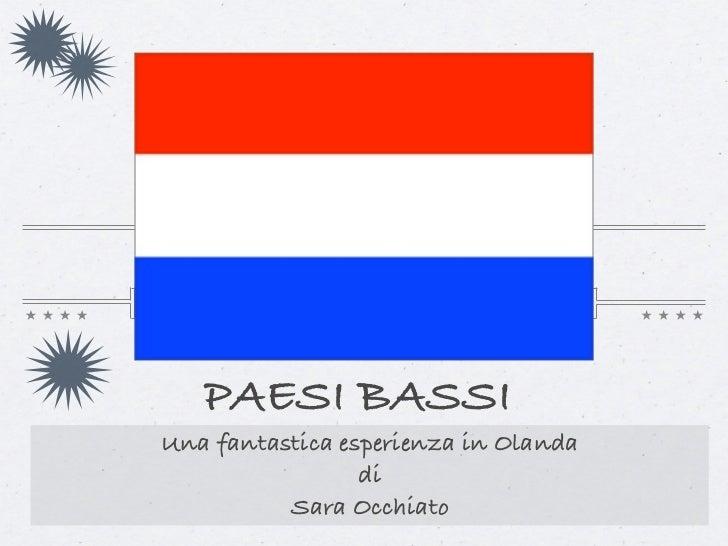 PAESI BASSIUna fantastica esperienza in Olanda                 di          Sara Occhiato