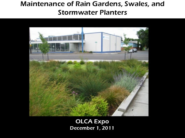 Maintenance of Rain Gardens, Swales, and         Stormwater Planters               OLCA Expo             December 1, 2011