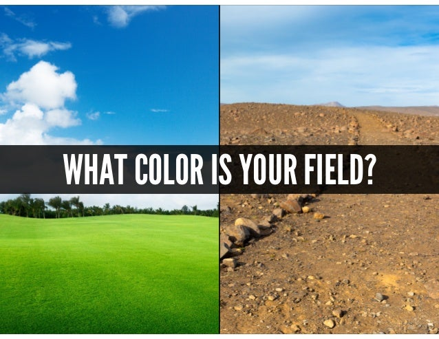 @mscottford WHAT COLOR IS YOUR FIELD?