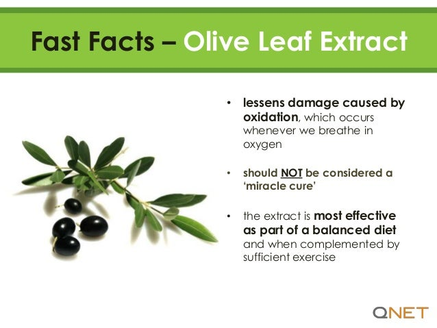 11 Reasons to Take Ole Olive Leaf Extract by QNET