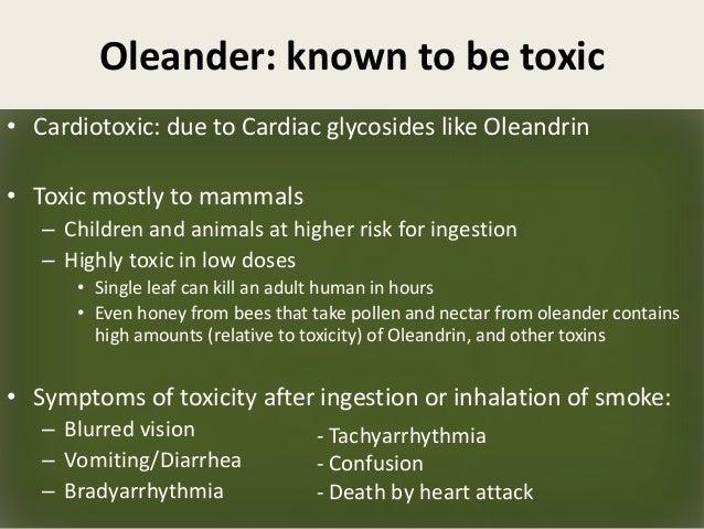 Oleander poison symptoms