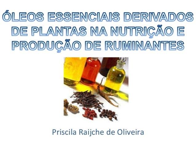 Priscila Raijche de Oliveira