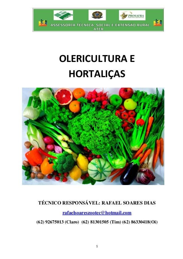 1 OLERICULTURA E HORTALIÇAS TÉCNICO RESPONSÁVEL: RAFAEL SOARES DIAS rafaelsoareszootec@hotmail.com (62) 92675013 (Claro) (...
