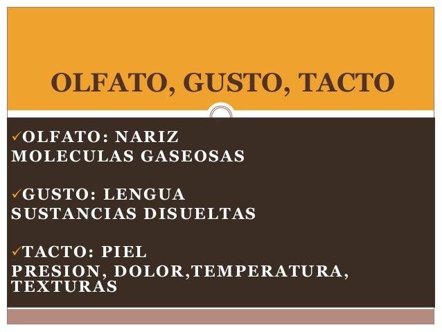 OLFATO: NARIZ MOLECULAS GASEOSAS GUSTO: LENGUA SUSTANCIAS DISUELTAS TACTO: PIEL PRESION, DOLOR,TEMPERATURA, TEXTURAS OL...