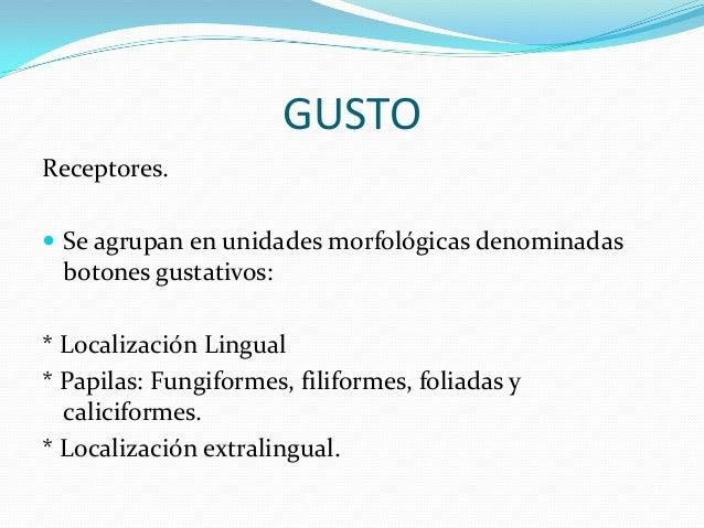 OLFATO Y GUSTO