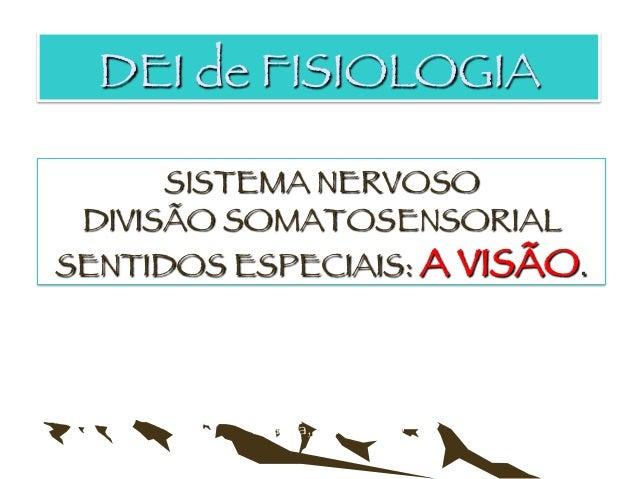 SISTEMA NERVOSO DIVISÃO SOMATOSENSORIAL SENTIDOS ESPECIAIS: A VISÃO. Luanda, Abril de 2013  Augusto C Manuel, MD Esp. DEI ...