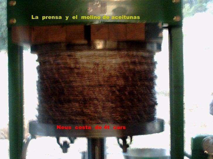 portada La  prensa  y  el  molino de aceitunas Neus  costa  de 4t  curs