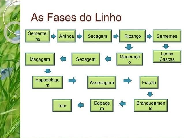 As Fases do Linho  Maçagem  Sementes  Dobage  m  Fiação  Branqueamen  to  Espadelage  m  Secagem  Maceraçã  o  Arrinca  Te...