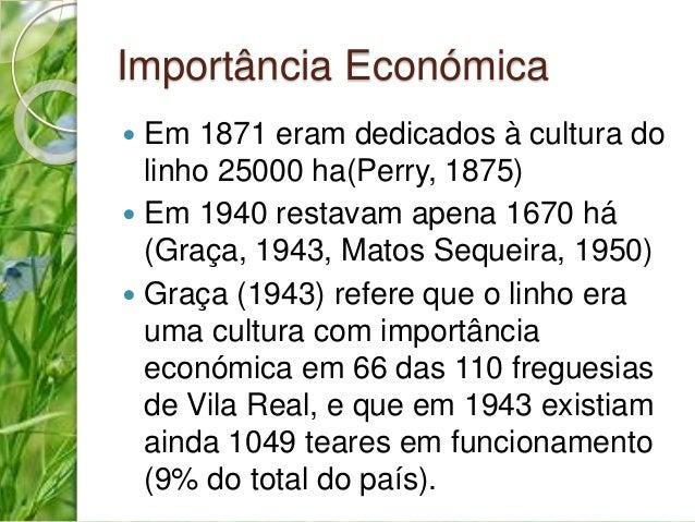 Importância Económica   Em 1871 eram dedicados à cultura do  linho 25000 ha(Perry, 1875)   Em 1940 restavam apena 1670 h...