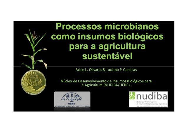 Processos microbianosProcessos microbianos como insumos biológicoscomo insumos biológicos para a agriculturapara a agricul...