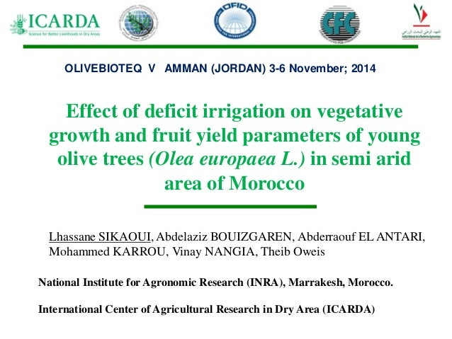 Effect of deficit irrigation on vegetative growth and fruit yield parameters of young olive trees (Olea europaea L.) in se...