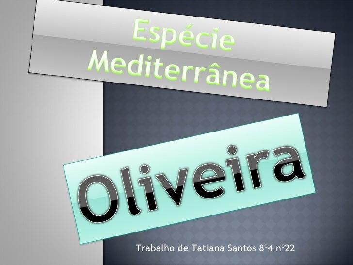 Trabalho de Tatiana Santos 8º4 nº22