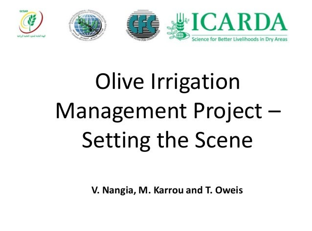 Olive Irrigation Management Project – Setting the Scene V. Nangia, M. Karrou and T. Oweis