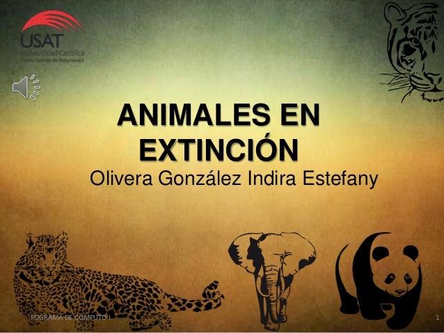 ANIMALES EN EXTINCIÓN POGRAMA DE COMPUTO I 1 Olivera González Indira Estefany
