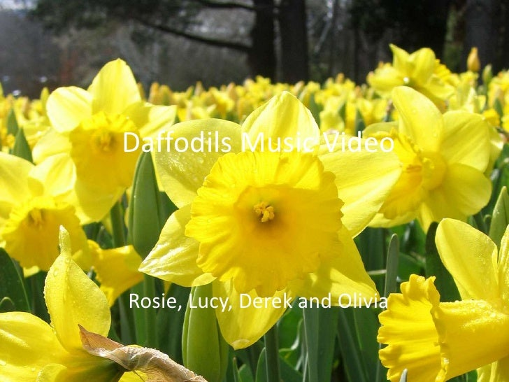 Daffodils Music Video<br />Rosie, Lucy, Derek and Olivia<br />