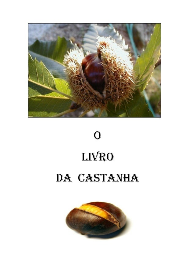 O LIVRO DA CASTANHA