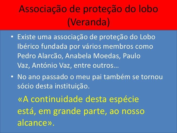 Trabalho realizado por:VASCO TEIXEIRA                     (2012)