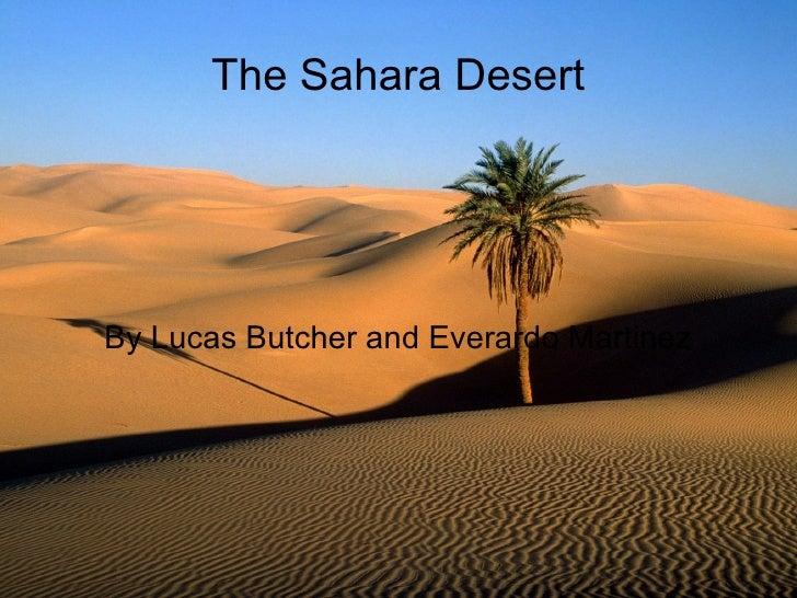 The Sahara Desert By Lucas Butcher and Everardo Martinez