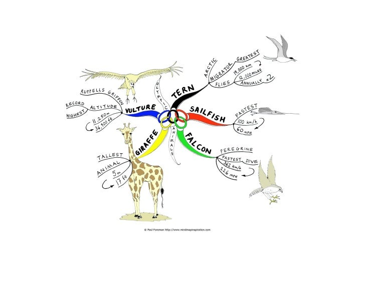 Olympic animalsIn honour and celebration of the Olympic Games coming to England 2012, I created a Going for Gold mind maph...