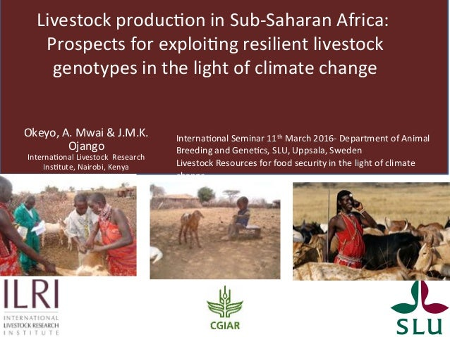Livestock produc/on in Sub-Saharan Africa: Prospects for exploi/ng resilient ...
