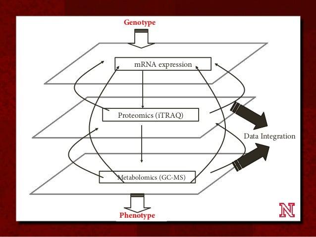 System Response Of Metabolic Networks In Chlamydomonas Reinhardtii Du