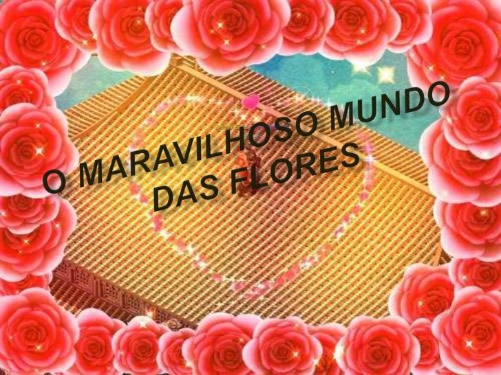 O maravilhoso mundo das flores