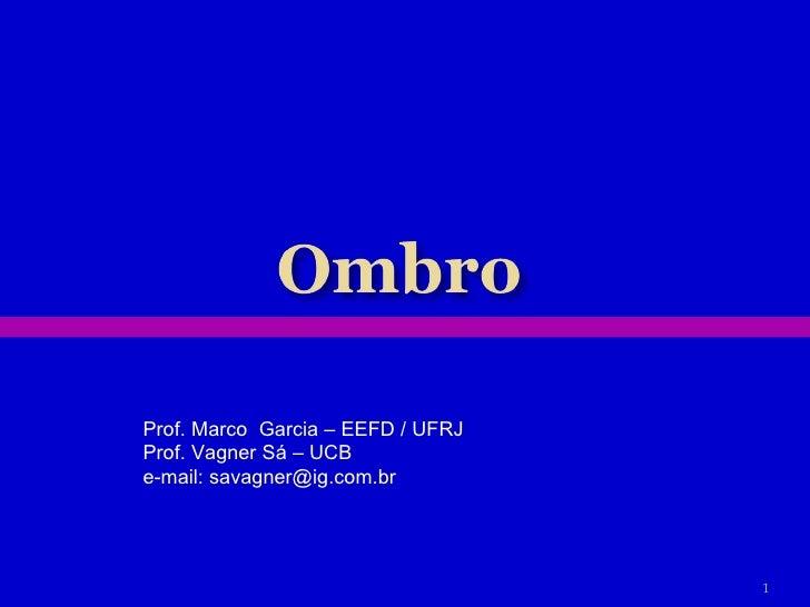 Prof. Marco  Garcia – EEFD / UFRJ Prof. Vagner Sá – UCB e-mail: savagner@ig.com.br