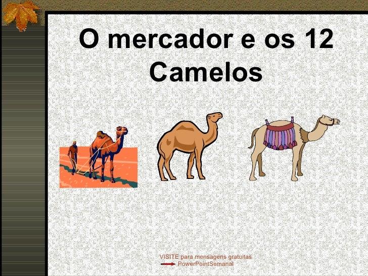 O mercador e os 12 Camelos