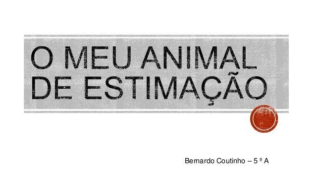 Bernardo Coutinho – 5 º A