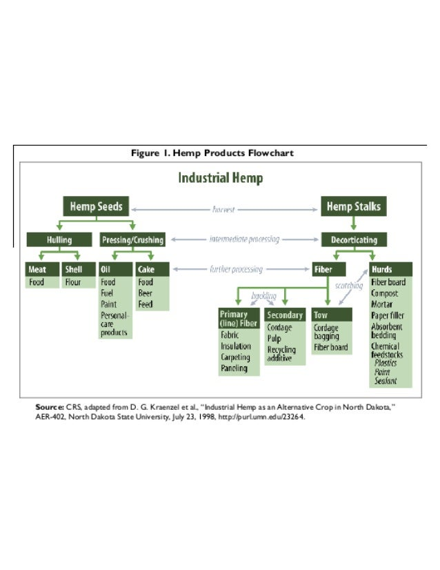 Hemp is a trillion dollar crop!! Slide 2