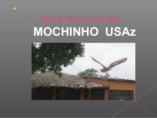 MOCHINHO USAz
