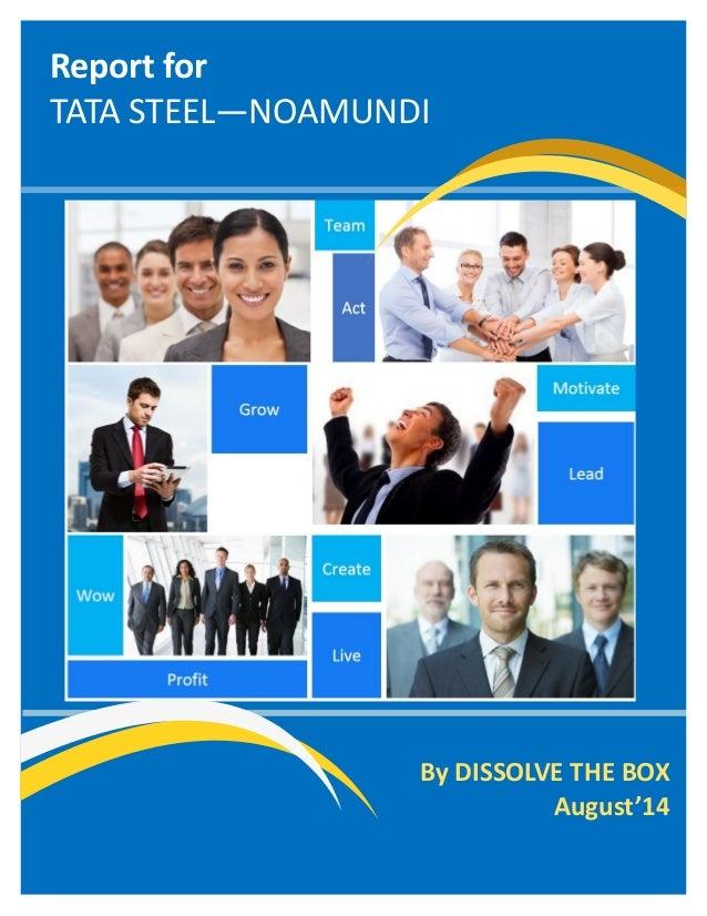 Report for TATA STEEL—NOAMUNDI  By DISSOLVE THE BOX  August'14
