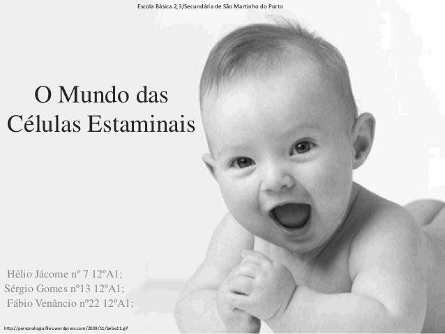 O Mundo das Células Estaminais Hélio Jácome nº 7 12ºA1; Sérgio Gomes nº13 12ºA1; Fábio Venâncio nº22 12ºA1; Escola Básica ...