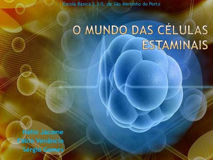 Escola Básica 2,3/S. de São Martinho do Porto<br />O Mundo das Células Estaminais <br />Hélio Jácome<br />Fábio Venâncio<b...