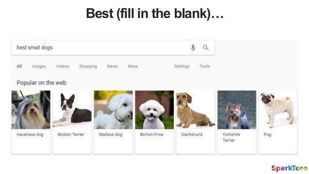 Best (fill in the blank)…