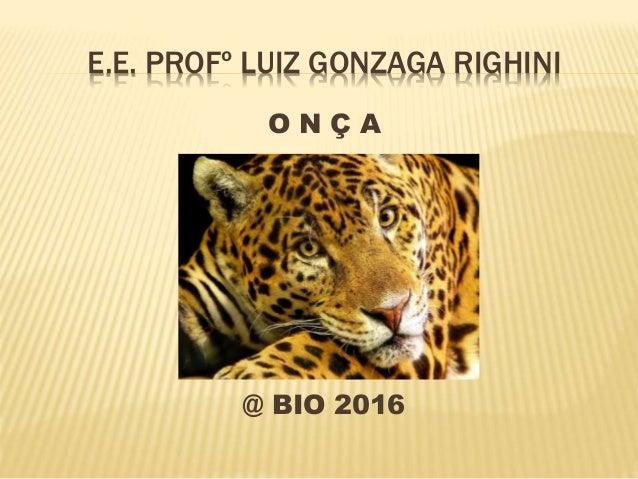 E.E. PROFº LUIZ GONZAGA RIGHINI O N Ç A @ BIO 2016