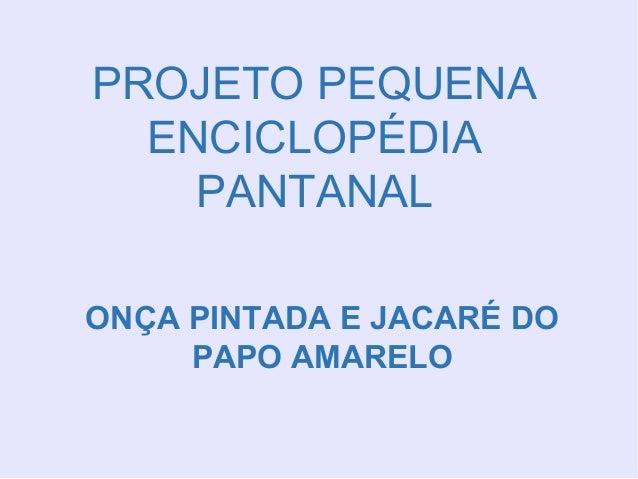 PROJETO PEQUENA ENCICLOPÉDIA PANTANAL ONÇA PINTADA E JACARÉ DO PAPO AMARELO