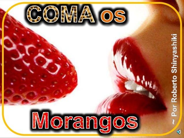 OLHA O URSO