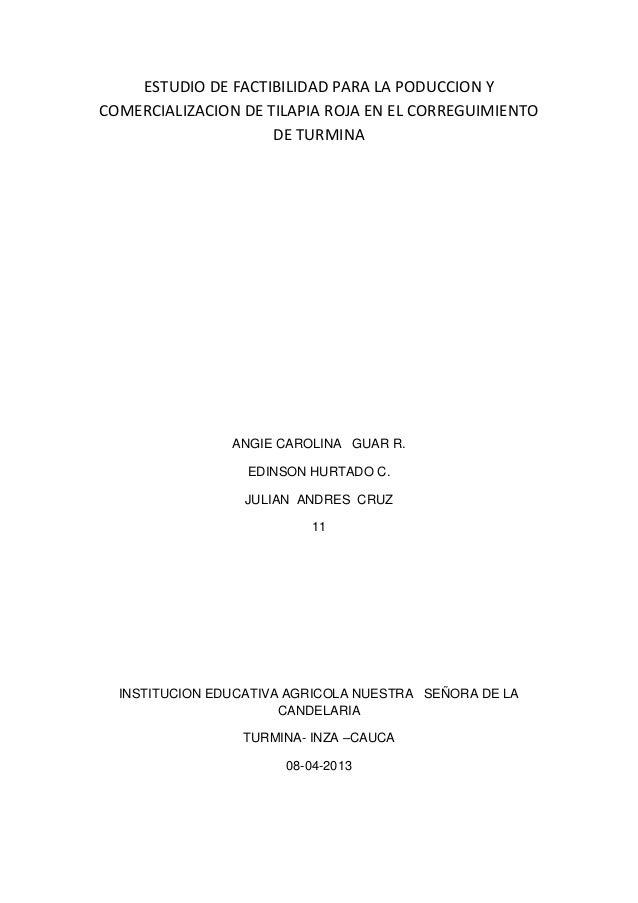 ESTUDIO DE FACTIBILIDAD PARA LA PODUCCION Y COMERCIALIZACION DE TILAPIA ROJA EN EL CORREGUIMIENTO DE TURMINA  ANGIE CAROLI...