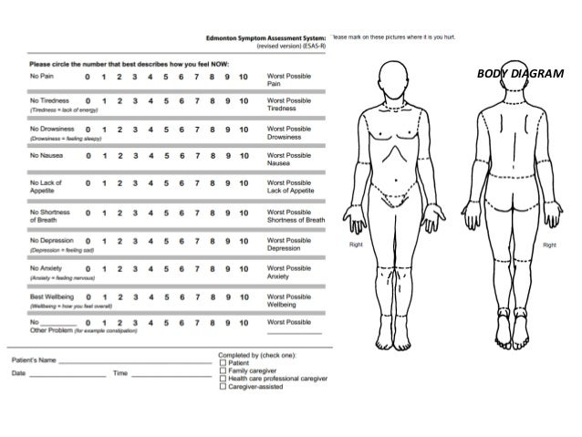 Body diagram for nursing assessment word wire data oncology nursing rh slideshare net drawing of the human body diagram skin assessment body diagram ccuart Image collections