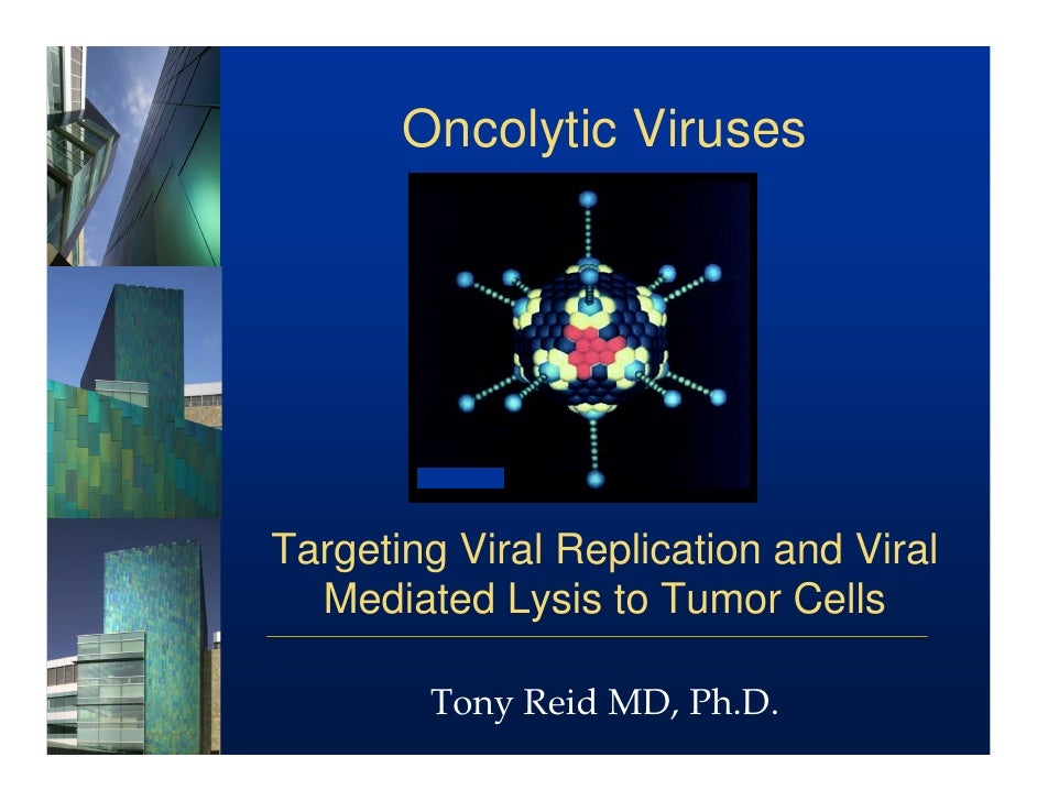 Oncolytic Viruses     Targeting Viral Replication and Viral   Mediated Lysis to Tumor Cells          Tony Reid MD, Ph.D.