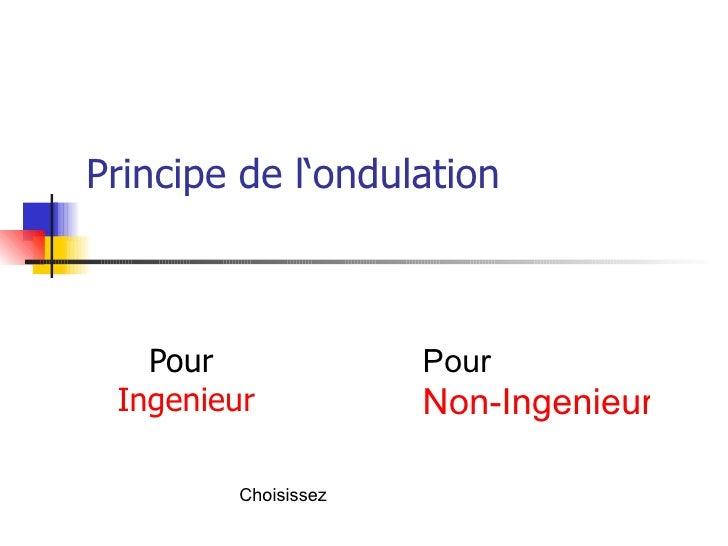Principe de l'ondulation Pour  Ingenieur Pour  Non-Ingenieur Choisissez