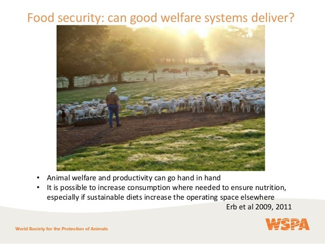 Can Consumer Demand Deliver Sustainable Food