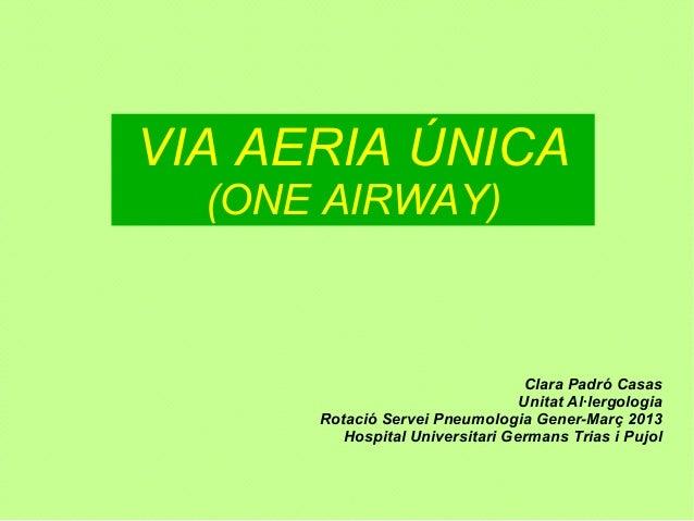 VIA AERIA ÚNICA  (ONE AIRWAY)                                 Clara Padró Casas                                 Unitat Al·...
