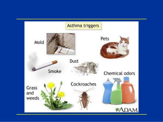 low-dose inhaled corticosteroids and the prevention of death from asthma
