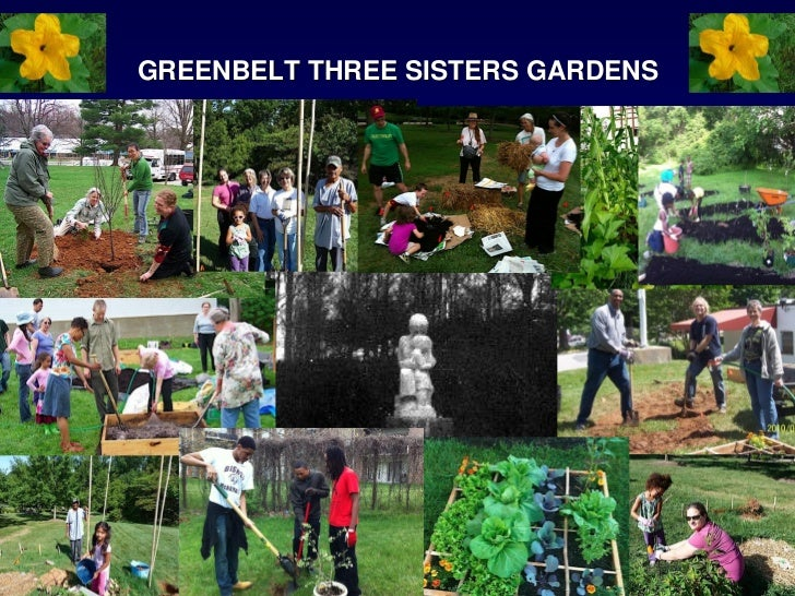 GREENBELT THREE SISTERS GARDENS