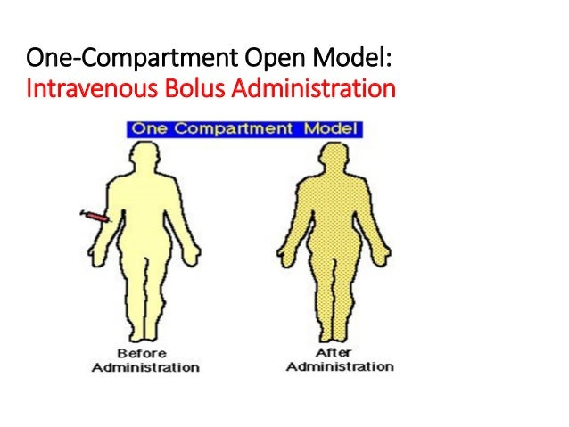 One-Compartment Open Model: Intravenous Bolus Administration