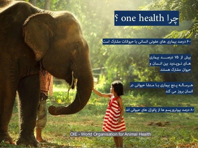 one health و ﻏﺬاﯾﯽ اﻣﻨﯿﺖ ﺳﺒﺰی و ﻫﺎ ﻣﯿﻮه ،ﮔﻮﺷﺖ .ﻟﺒﻨﯿﺎت ایﺮﺑ ﺗﻘﺎﺿﺎ اﯾﺶﺰاﻓ .۱ ارﮔﺎﻧﯿﮏ ﻣﺤﺼﻮ...