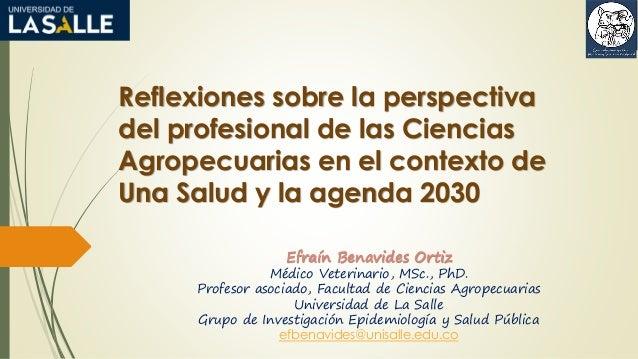 Reflexiones sobre la perspectiva del profesional de las Ciencias Agropecuarias en el contexto de Una Salud y la agenda 203...