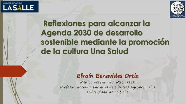 Reflexiones para alcanzar la Agenda 2030 de desarrollo sostenible mediante la promoción de la cultura Una Salud Efraín Ben...